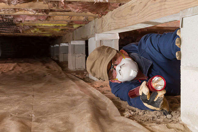 Could Your Crawlspace Be Making You Sick? Consider Crawlspace Encapsulation.