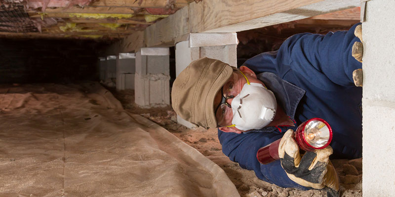 crawlspace encapsulation may be a good idea for you