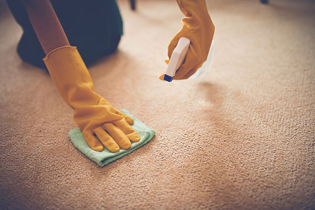 3 Expert Tips for Protecting Your Carpet