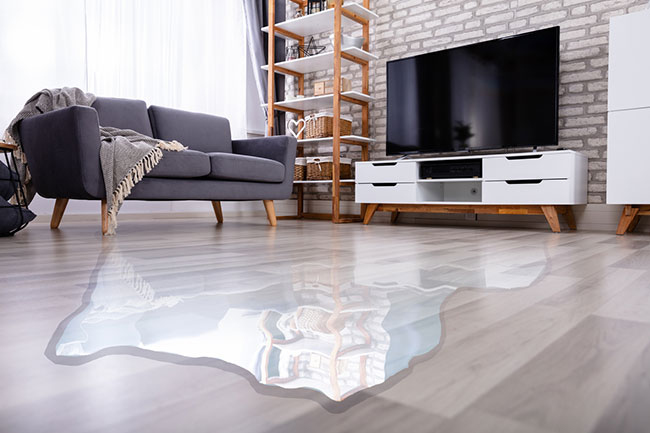 Water Damage Inspection Can Help After a Flood
